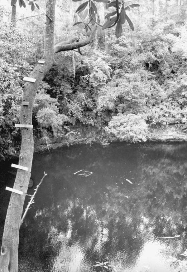 PHOTO: State Archives of Florida / Big Dismal sinkhole Leon County, Florida 1964