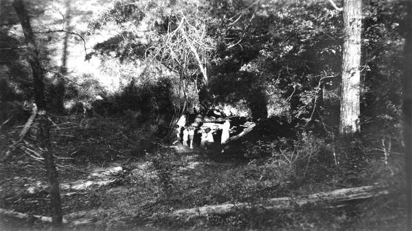 PHOTO: State Archives of Florida /Gropher Sinkhole by Jacobs W. F. 1936