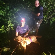 Tennessee Sinkhole news